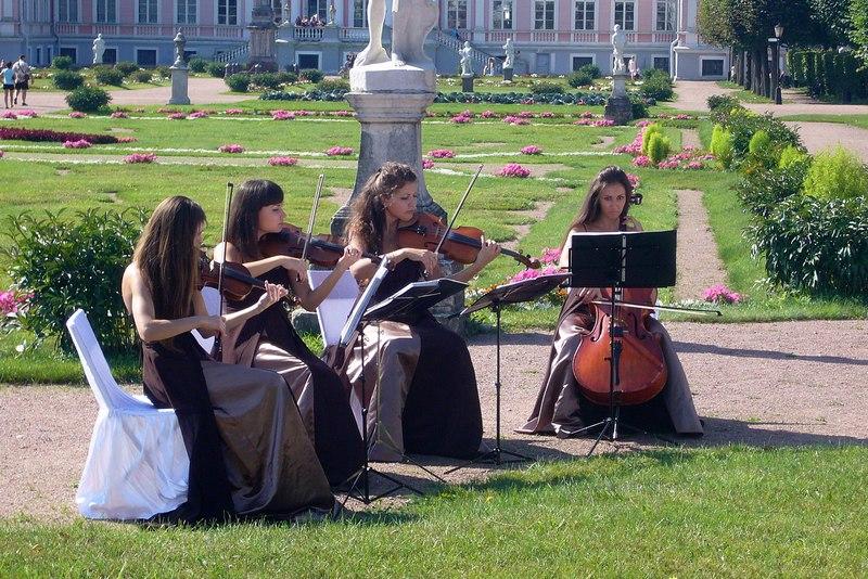 Музыканты на свадьбе в парке