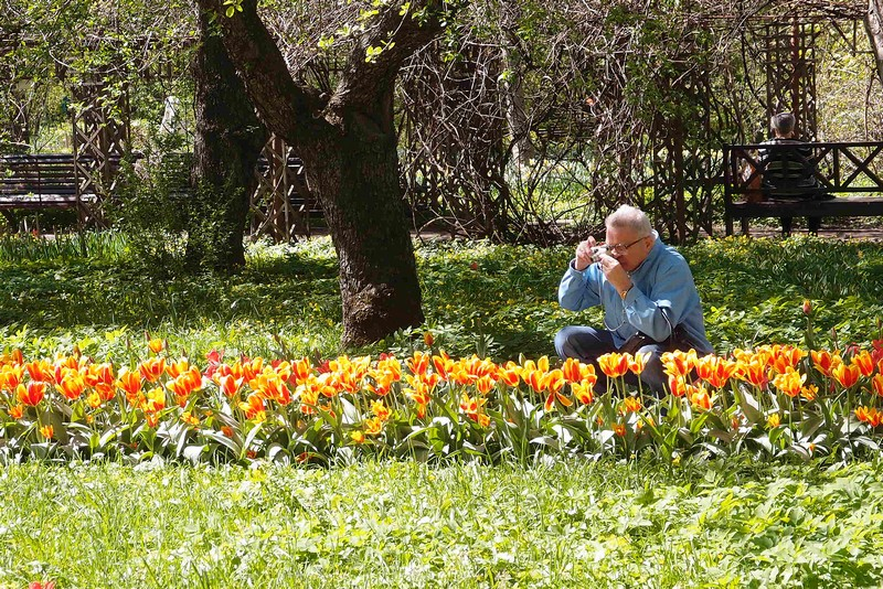 Фотографирует цветы