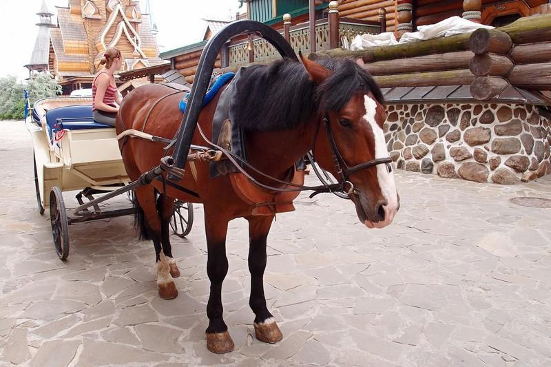 Лошадка с каретой