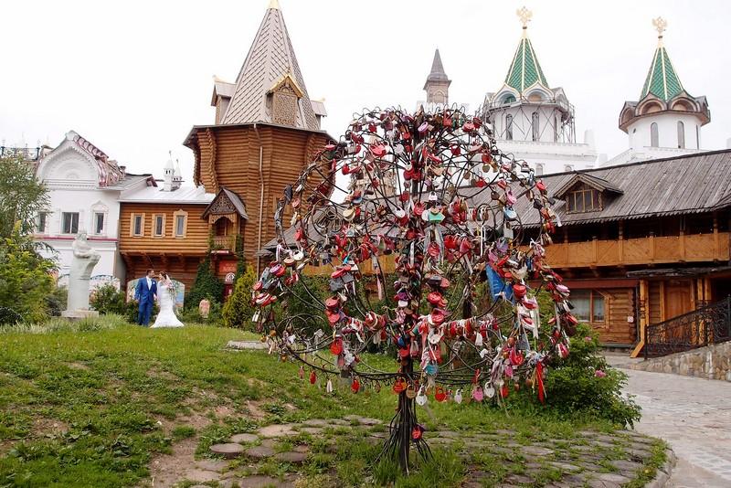 Дерево с замками