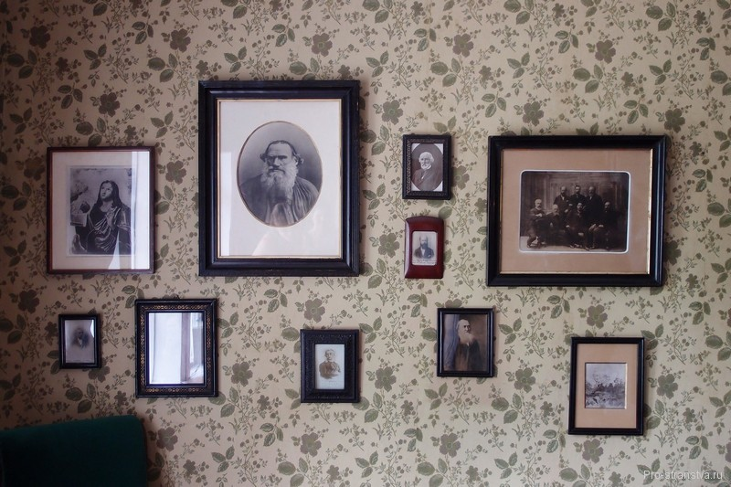 Портрет Льва Толстого