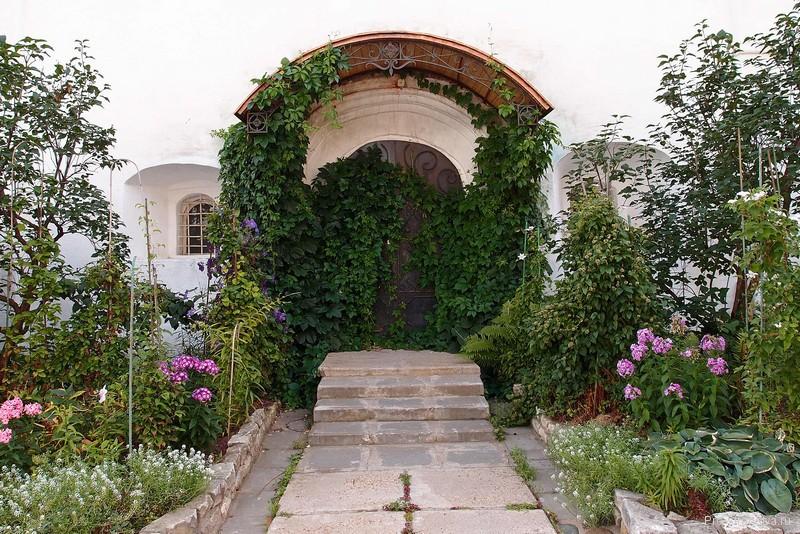 Дверь, заросшая диким виноградом