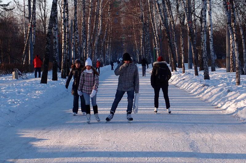 Ледовые дорожки на Березовой аллее