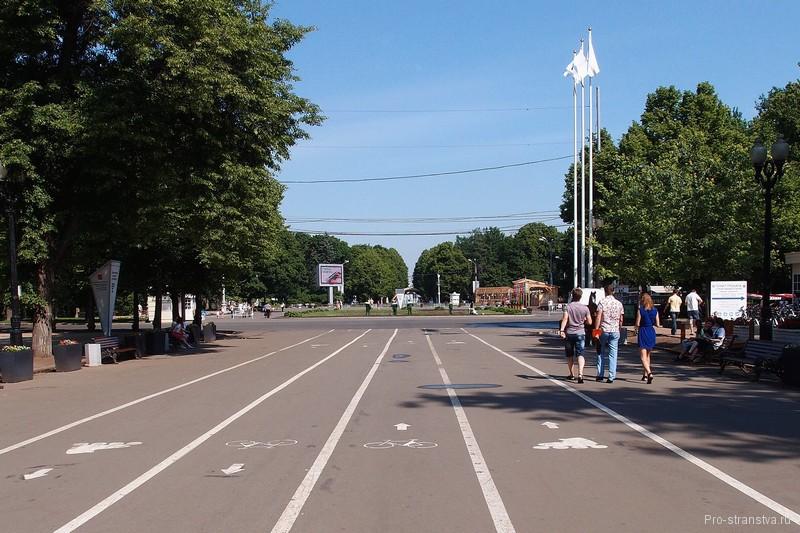 Аллея в парке Сокольники