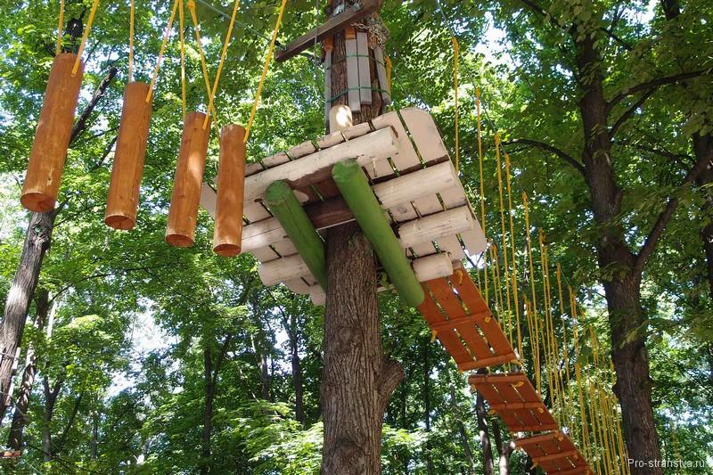 Веревочные аттракционы на деревьях
