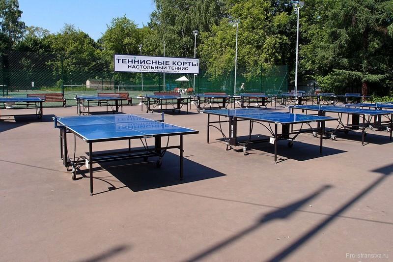 Здесь можно поиграть в настольный теннис