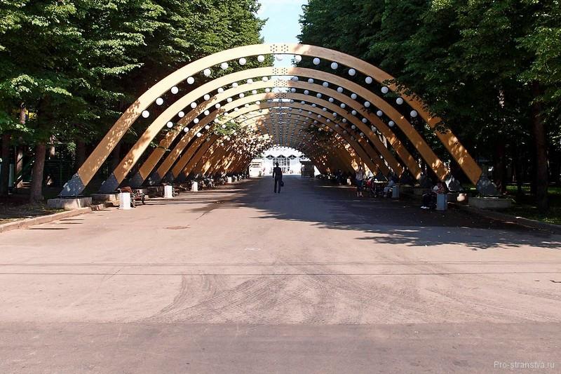 Красивая арка из дерева