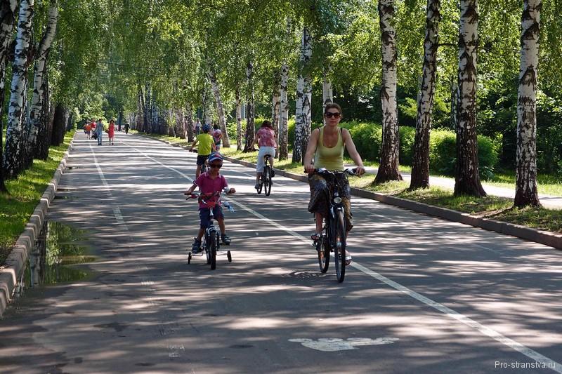 Здесь можно покататься на велосипедах