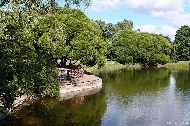 Смотровая площадка у пруда с видом на Лабораторный корпус
