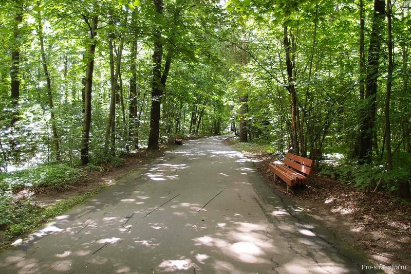 Дорожка в Главной ботаническом саду