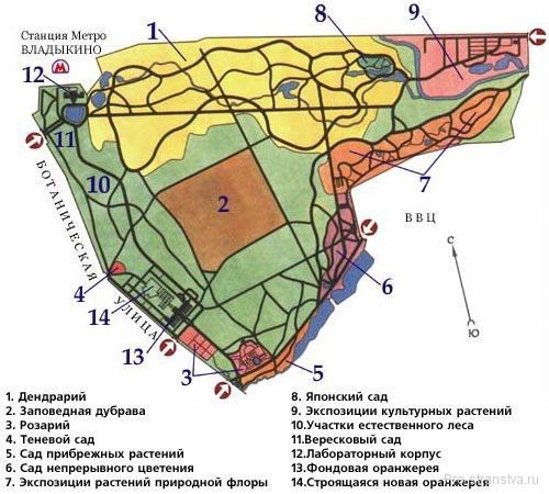 Карта-схема Ботсада