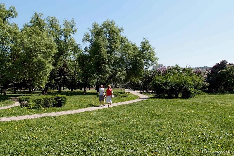 Тропинка в парке
