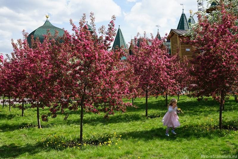 Красота у дворца