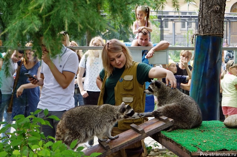 Зоопарк в Москве на Баррикадной