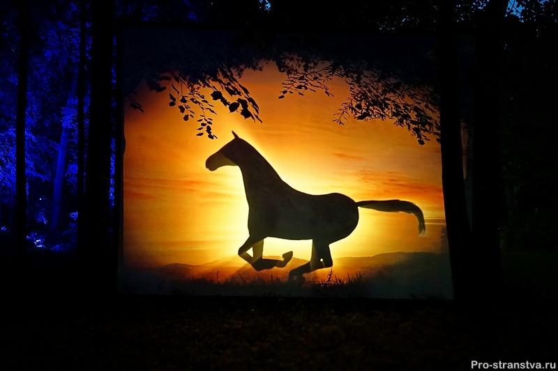 Лошадь ночи